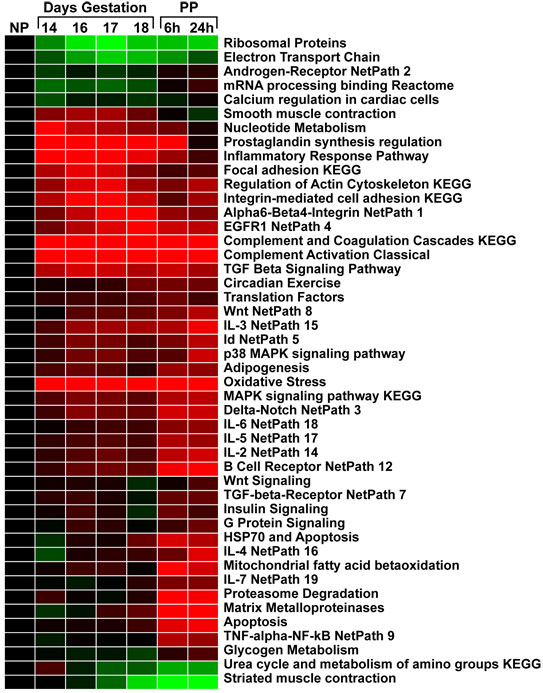 microarray results Gallery